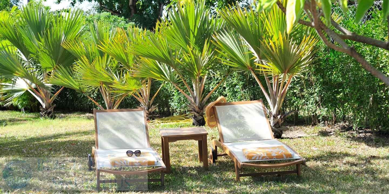 Villa-Stella-Maris-Gallery-garden-sun-beds